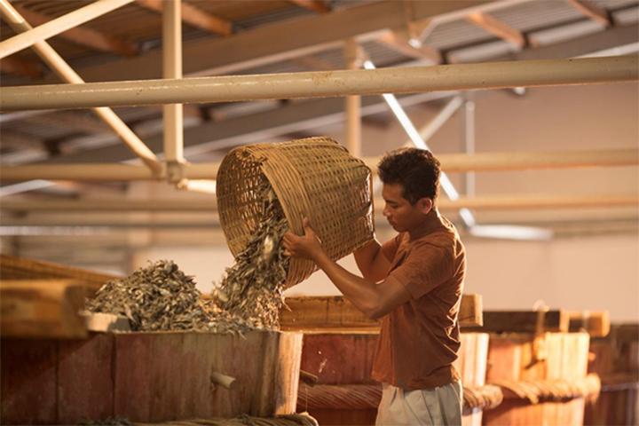 Công nhân thực hiện quá trình ngâm cá